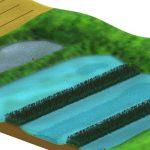 Nu kan landmænd snart søge tilskud til minivådområder – kunne du tænke dig et?